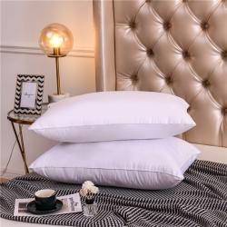 天欧 跑量款单边全棉羽丝绒五星级酒店枕芯柔软舒适枕头纯白