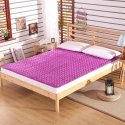 锦诺家纺 2019年爆款法兰绒梅花精品床褥子床垫 紫色