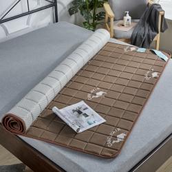 金圣伦 2019新款乳胶床垫2公分沙漠骆驼