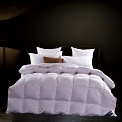 富旺家纺 促销羽绒被(56格)白色