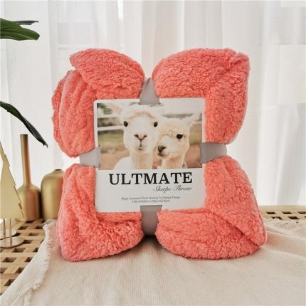 (总)马卡龙双层羊羔绒毛毯加厚单双人盖毯珊瑚绒毯子
