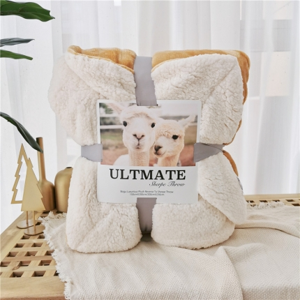 卜古马卡龙双层羊羔绒毛毯加厚单双人盖毯珊瑚绒毯子卢克索米