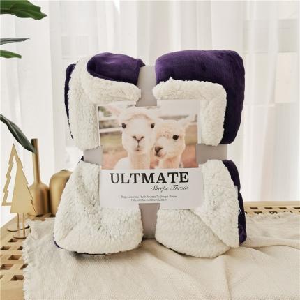 卜古马卡龙双层羊羔绒毛毯加厚单双人盖毯珊瑚绒毯子温莎紫