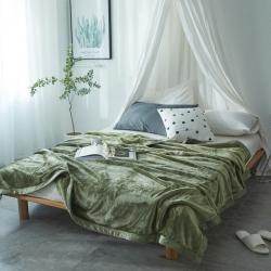 来菲家纺 400克云貂绒毛毯羽衣甘蓝绿加厚外贸纯色珊瑚绒毯子