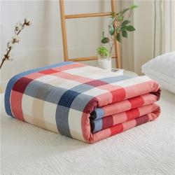 暖阳 可水洗100%里外全棉棉花被空调被纯棉夏被 浅夏