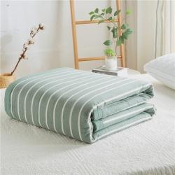 暖阳 可水洗100%里外全棉棉花被空调被纯棉夏被 森鹿