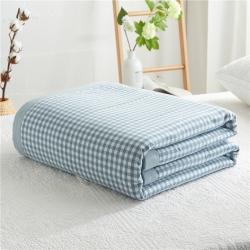 暖阳 可水洗100%里外全棉棉花被空调被纯棉夏被 欢乐