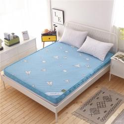 钻爱床垫  2018新款5D印花透气床垫 自由飞翔-天蓝色