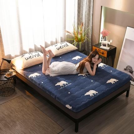 (总)钻爱床垫 10cm厚冬夏两用加厚保暖牛奶绒床垫