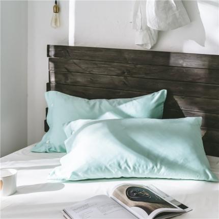 (总)原研家居 2018新款60S长绒棉素色单品枕套一对