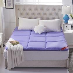 宁皇家纺 磨毛床垫 紫色