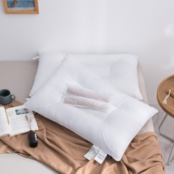 銥梵 2019新款大豆養生枕枕芯