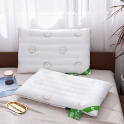 銥梵 2019新款防霉抗菌枕低枕枕芯