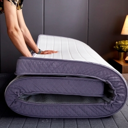(总)乐事床垫 2019新款乳胶记忆海绵立体床垫