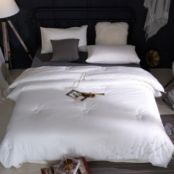 嘉柏家纺  高品质60长绒棉磨毛绣花烫钻蕾丝冬被1