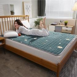 (總)麗諾床墊 2019新款牛奶絨床褥