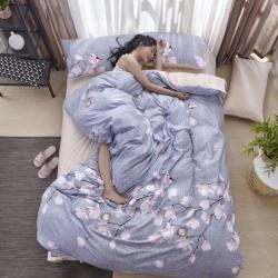 (总)贝拉梦 澳绒拼水晶绒四件套带模特