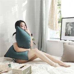 (总)三味舒屋 60长绒棉有色枕芯48*74