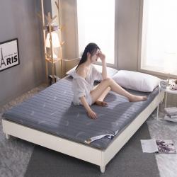 暖季家纺 2019新款乳胶床垫 羽毛-灰