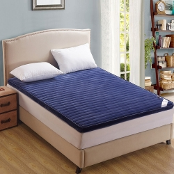 艾尚枕芯 法莱绒立体床垫蓝色