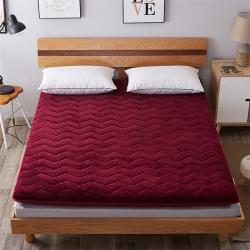艾尚枕芯 加厚法莱绒绗绣床垫酒红色