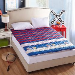 艾尚枕芯 加厚素色床垫运动风尚