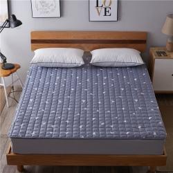 艾尚枕芯 磨毛水洗床垫_2.5cm厚思绪