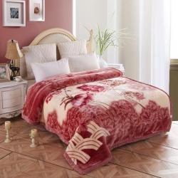 (总)好艺佳毛毯 2021新款拉舍尔毛毯学生毯双层加厚冬季