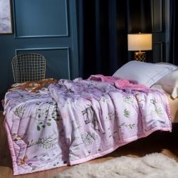 库存  双层天丝加绒毛毯珊瑚绒毛毯拉舍尔毛毯法莱绒毛毯