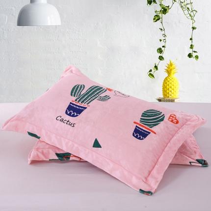 爱思凯 250克法莱绒单品枕套 仙人球