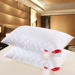 清仓 南极人同款 全棉单边绗缝羽丝绒枕芯