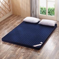 (總)康愛家紡慢回彈記憶棉床墊(10cm)