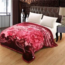 (总)香港红蜻蜓 拉舍尔压花毛毯