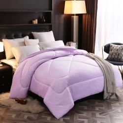 媛之蔻 新品磨毛压花冬被 紫色