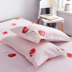 (总)拾物记 新款12868纯棉枕套30x50cm/只
