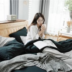 (总)朴本家纺 2018新款棉法兰绒双拼四件套床单款