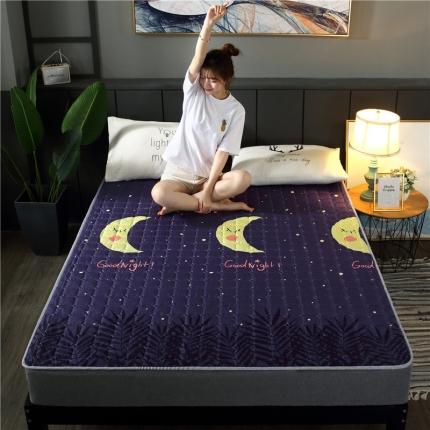 富亿莱床垫 2019磨毛多用四季防滑薄款床垫 晚安