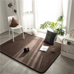 仁慧家紡 2019新款素色地毯地墊門墊茶幾墊 素色咖啡