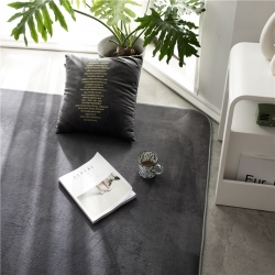 仁慧家紡 2019新款素色地毯地墊門墊茶幾墊 素色銀灰