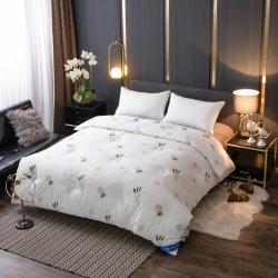 纽蔓家纺 13372全棉喷气保暖冬被整张羽丝棉被萝猕欧