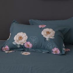 (總)七仙女家紡 2019年新款32支全棉生態磨毛單品枕套