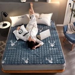 (总)眠势力 2019新款保暖法莱绒印花床垫