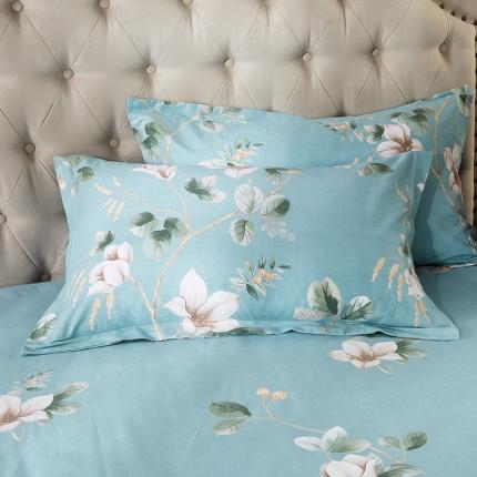 (总)凯磊家纺 生态磨毛单品枕套