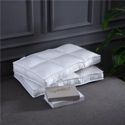 (總)賽格時代家居    全棉貢緞區位定型枕芯