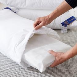 抗日家纺 全棉可脱卸拆洗弹簧枕芯 不变形五星级酒店四季枕头