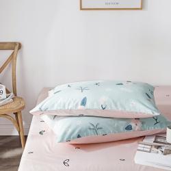 (总)卡诗兰顿 2019全棉枕套单枕套