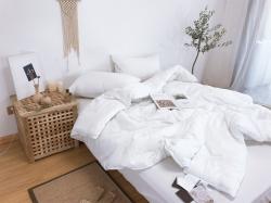 夏凉套件专用被芯纯棉提花蚕蛹蛋白纤维被春秋被夏被空调被可机洗