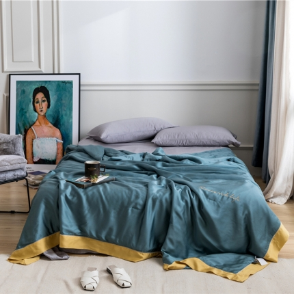 (总)西里家居兰精天丝双面60支夏被简约素色纯色水洗空调被子