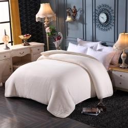 有网棉花被 学生架子床被褥 单人双人床棉被芯棉胎被胎垫被定制