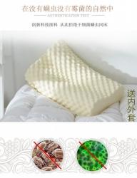 泰国原液进口天然乳胶枕乳胶枕芯乳胶枕头